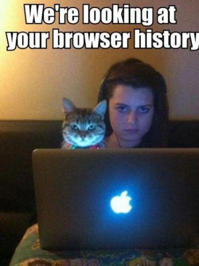 browser+history.jpg.cf